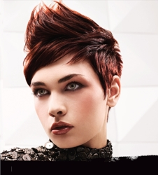 Paul Mitchell Hair Color Red and Copper