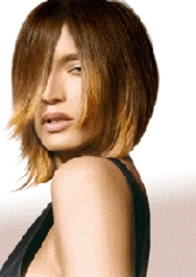 Below The Chin Length Brunette Bob