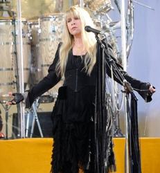 Surprising Stevie Nicks Hair How To Hairboutique Com Blog Short Hairstyles Gunalazisus
