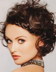 Dressy Short Hair Style