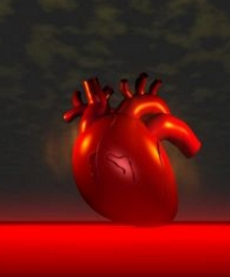 Metabolic Syndrome Heart And Diabetes Risks