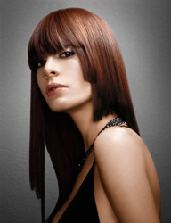Paul Mitchell - Brunette - The Color - Spring Collection 07