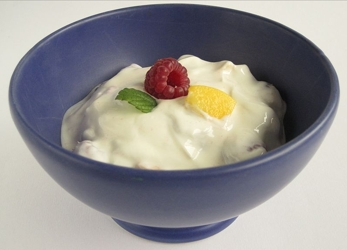 Bowl Of Yogurt With Fruit Embellishment - HB Media - All Rights Reserved