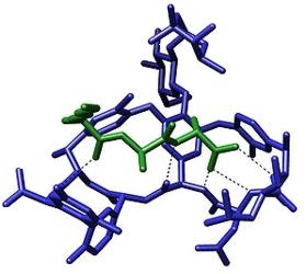 Vancomycin Antibiotic