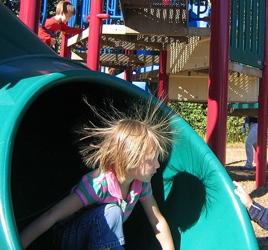 Static Hair - Wikipedia.com