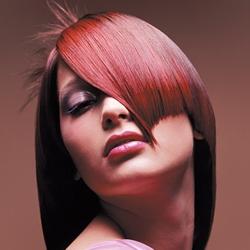 hair_flux1_250h