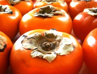 Blog about Persimmons For Hair Growth