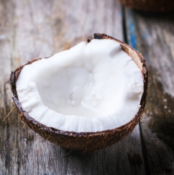 Blog about Natural Coconut Hair Conditioner