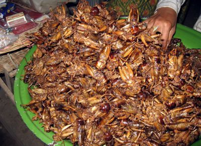 Eat Crickets For Hair Loss And Regrowth - Fried Crickets In Cambodia - Wikipedia
