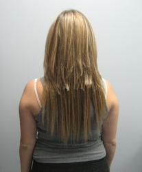 Do it yourself hair extensions tiffanytwist hairboutique articles brigid k oconnor after diy hair extensions 08 04 07 solutioingenieria Image collections