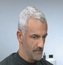 Conquer Men S Gray Hair Instantly Hairboutique Articles