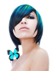 http://www.hairboutique.com/tips/NAHA3_ChrystopherBenson_250h.jpg