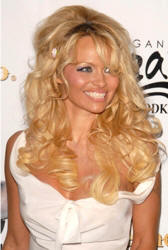 Pam Anderson Hairstyles Tips And Haircuts Picture | LONG HAIRSTYLES