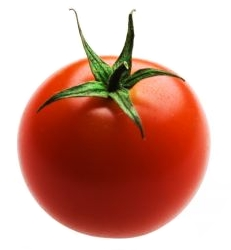 Image of Tomato - Wikipedia - All Rights Reserved